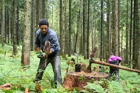 Bergwaldprojekt e.V. und Landesforsten setzen auf naturnahen Harzwald