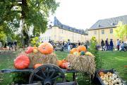 Schlossherbst: der traditionelle Herbstmarkt auf Schloss Dyck lockt mit regionaler Vielfalt und Unterhaltung für die ganze Familie