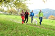 Wanderer am Neckarsteig