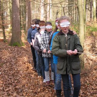 Zertifizierte Waldpädagoginnen und Waldpädagogen treffen sich im Harz