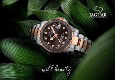 Jaguar 2019 2020 5